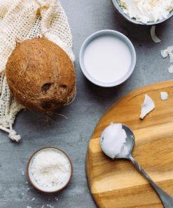 Kokosmilch & Kokosnuss